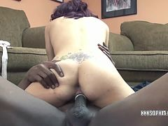 Sophia gets fucked with a black dick